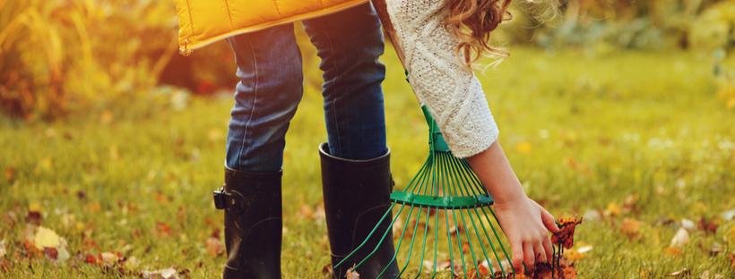 Little girl raking leaves